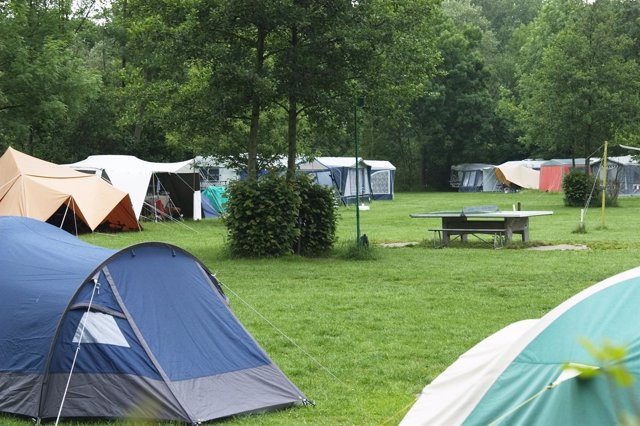 Campingsite With Tents