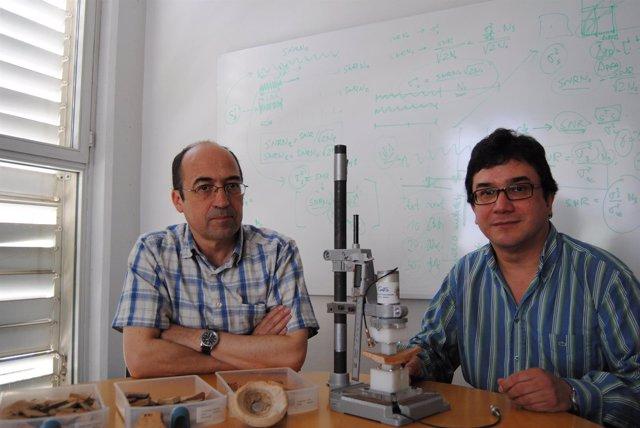Investigadores De La UPV Analizan Cerámicas Arqueológicas Con Ultrasonidos