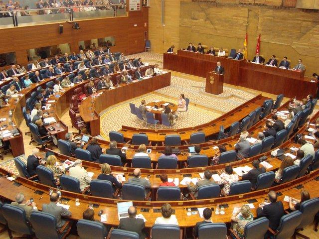Hemiciclo De La Asamblea De Madrid