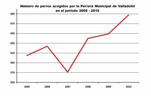 Evolución Del Abandono De Perros En La Capital Vallisoletana