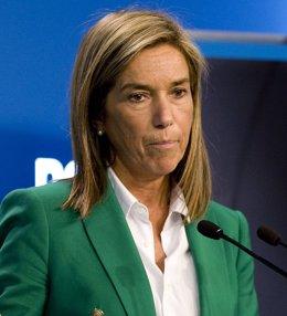 Ana Mato, Vicesecretaria General Del PP