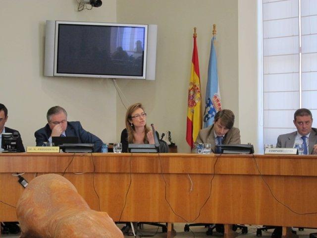 Marta Fernández Currás, En Comisión Parlamentaria