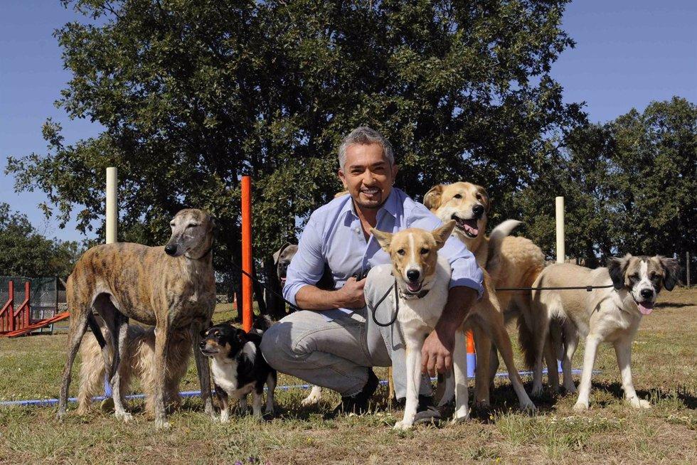 César Millán, Presentador De 'El Encantador De Perros'