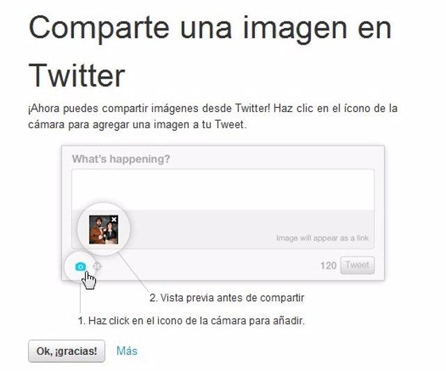 Compartir Imágenes En Twitter