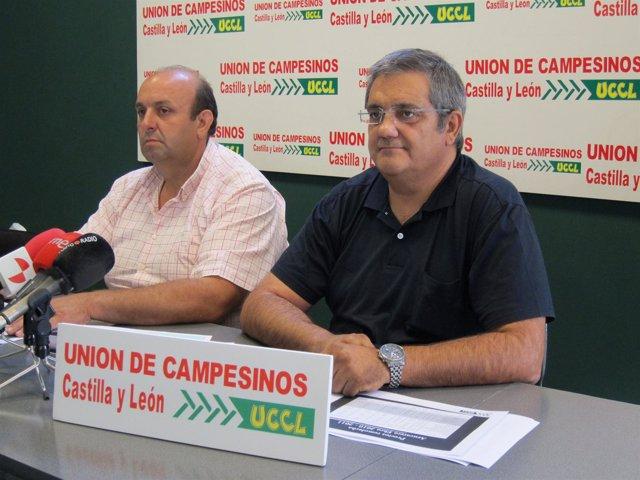 Juan Antonio Rodríguez, Responsable De Remolacha En UCCL, Junto A Ignacio Arias