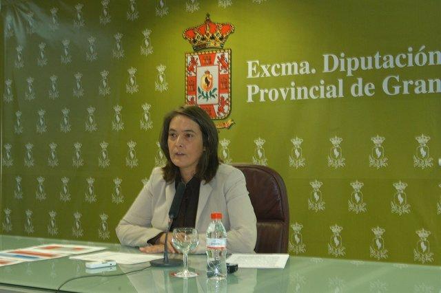 Luisa García Chamorro, Vicepresidenta En La Diputación