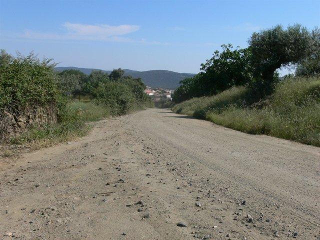 Camino Salvatierra
