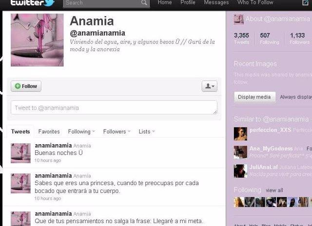 Perfil Anorexia En Twitter