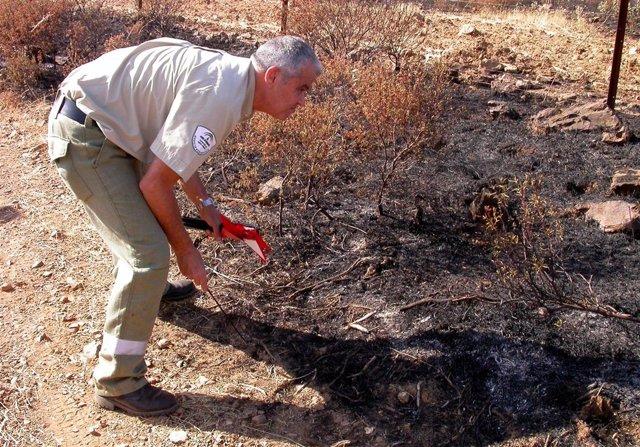 Agentes De Medio Ambiente Investigando Causas De Incendio