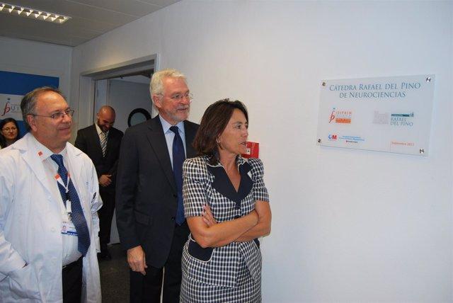 La Presidenta De La Fundación, María Del Pino, Descubre La Placa