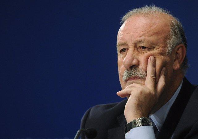 El seleccionador español de fútbol, Vicente del Bosque