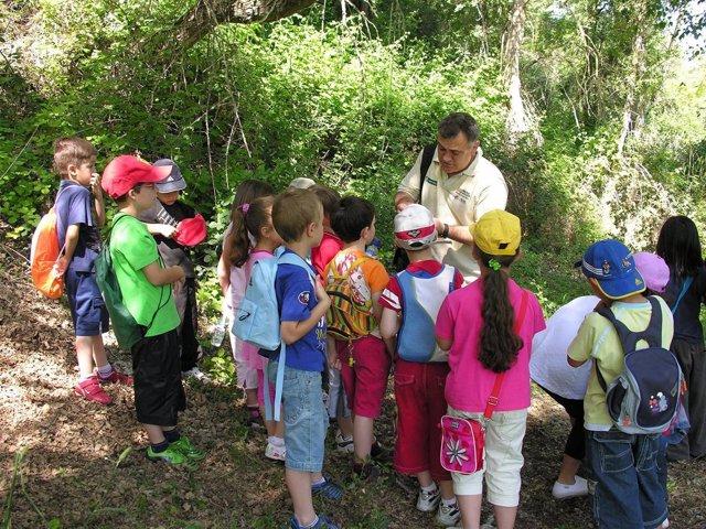 Curso De Educación Ambiental Del Gobierno De Aragón