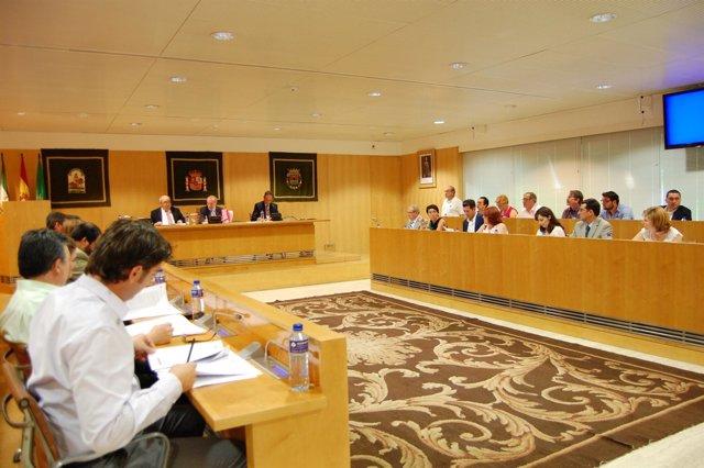 La Diputación Celebra Su Pleno De Organización.