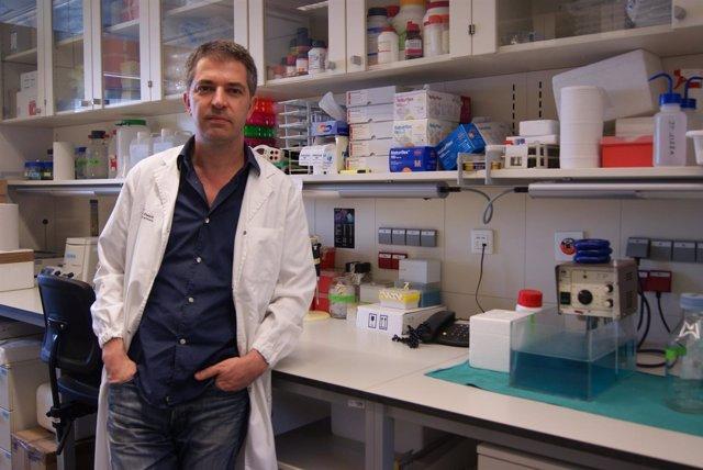 Jordi Petriz, Investigador Del VHIR Responsable Del Estudio