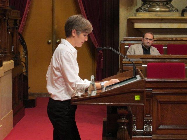 Dolors Camats, Portavoz De ICV-Euia En El Parlament