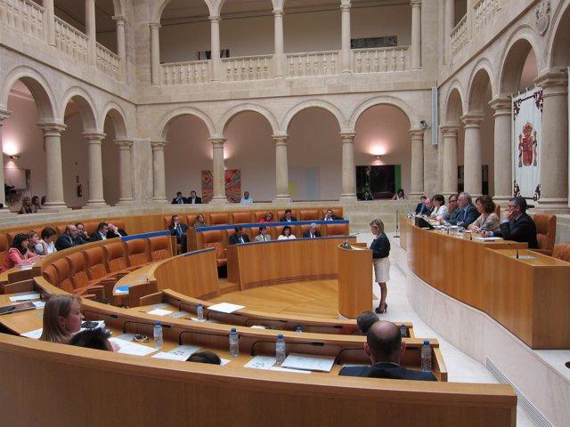 Defensora Del Pueblo De La Rioja En El Parlamento
