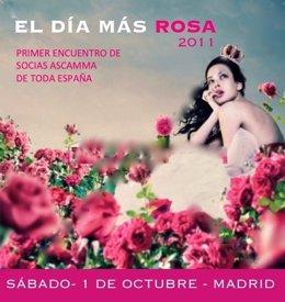 Día Más Rosa- Asocación Cáncer De Mama De Madrid