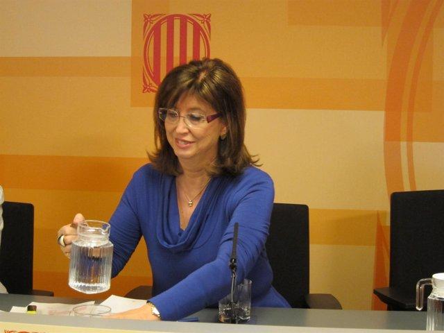 Irene Rigau, Consellera De Enseñanza