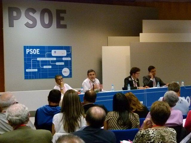 Pedro Saura En La Conferencia Política PSOE
