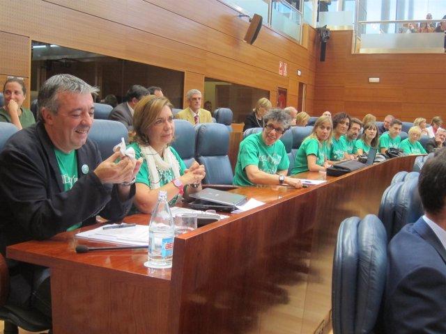 Bancada De IU Con Las Camisetas De La 'Marea Verde'