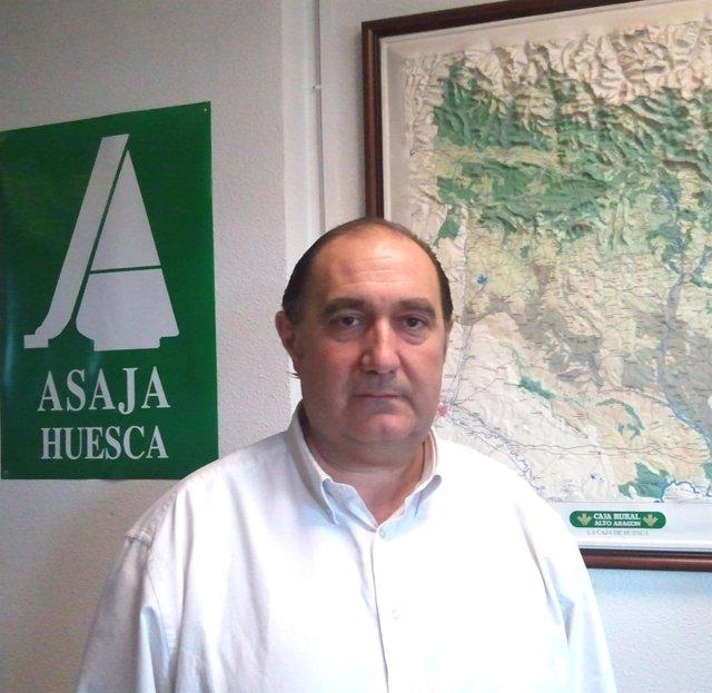 Fernando Luna
