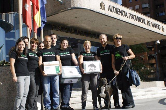 Miembros Del Partido Animalista Durante La Recogida De Avales