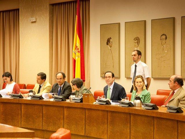 Reunión De La Diputación Permanente Del Congreso