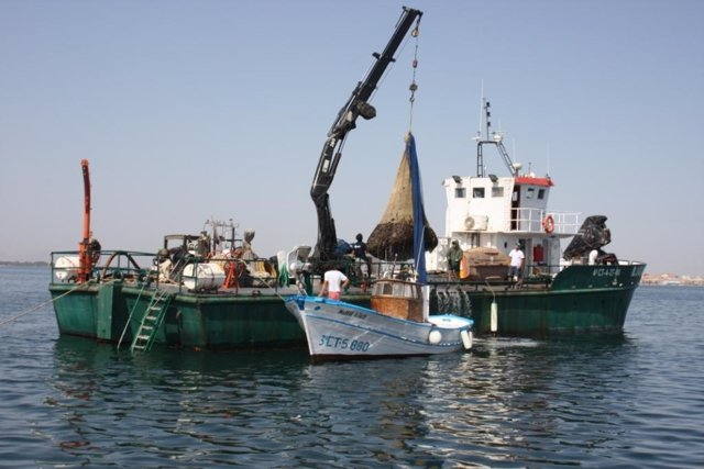 Operativo De Pesca En El Mar Menor De Las Medusas