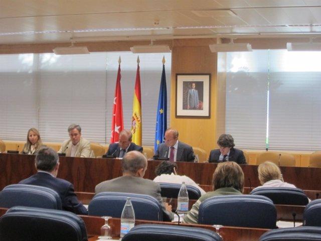 Comisión De Medio Ambiente En La Asamblea De Madrid