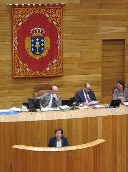 La conselleira de Sanidade, Pilar Farjas, en el Parlamento.