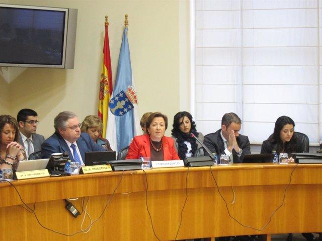 Foto Pilar Farjas Comparecencia Presupuestos Comisión Economía