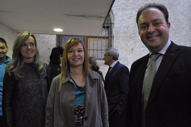 Alegría, Pajín Y Ruiz