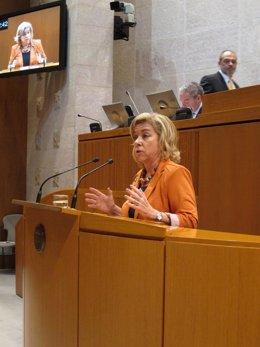 Dolores Serrat En El Pleno De Hoy