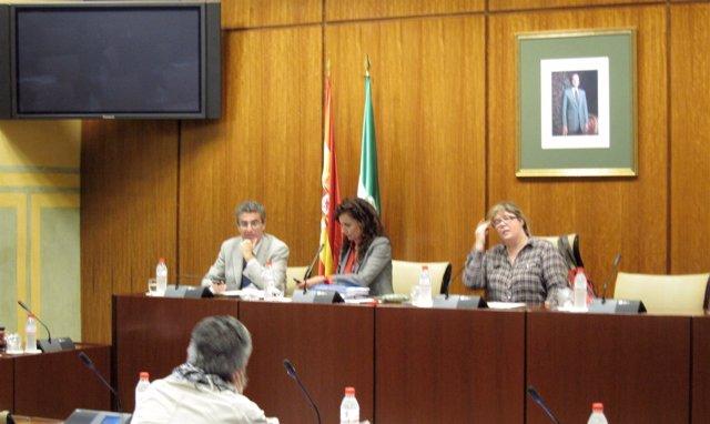 Montero Durante Su Comparecencia En La Comisión De Salud