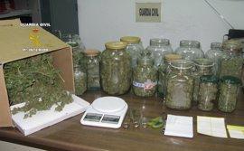 Tres detenidos, uno menor, de un clan familiar por robo, receptación, cultivo y venta de marihuana