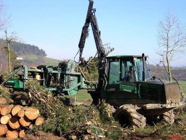 Explotación Forestal En Asturias.