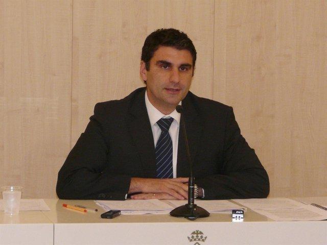 Julio Martínez, Portavoz De Cort