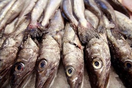 Comer pescado podría disminuir el riesgo de diabetes, según estudio español