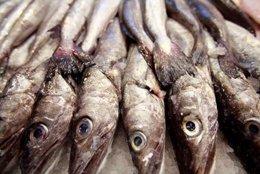 Un Nuevo Estudio Demuestra Los Beneficios Del Pescado