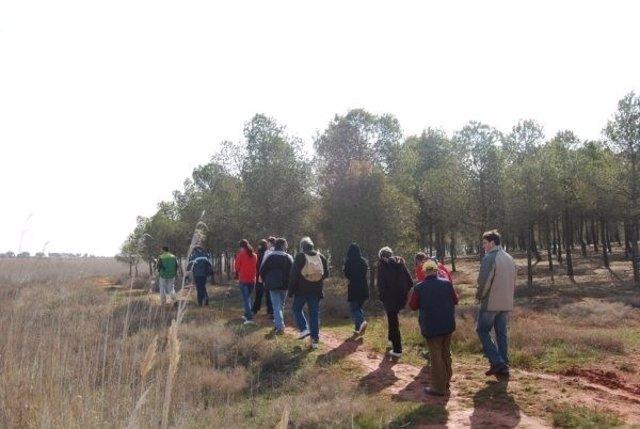 Paseo, Campo, Monte, Naturaleza, Senderismo