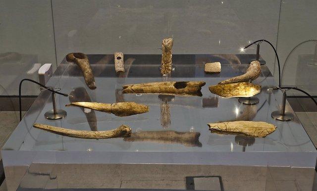 Vitrina Del Museo De Altamira