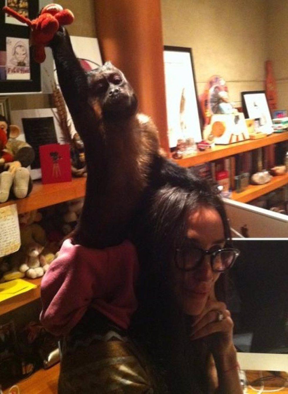 Demi Moore Con Un Mono
