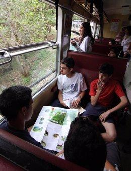 El Tren De La Naturaleza