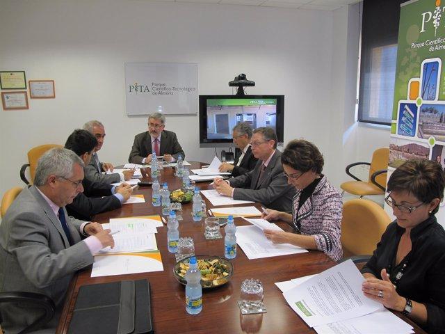 Comisión Ejecutiva Del PITA