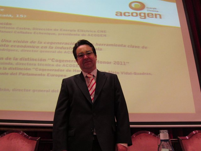 El Director General De Acogen, Javier Rodríguez