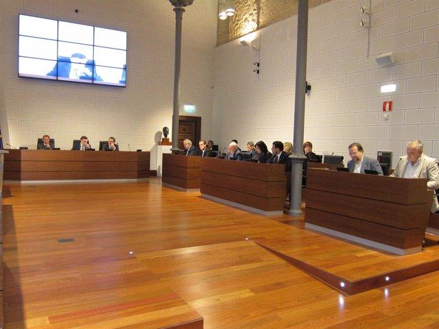 La DPZ Ha Celebrado Pleno Extraordinario