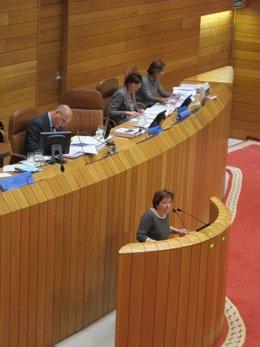 La Conselleira De Sanidade, Pilar Farjas, En El Pleno.