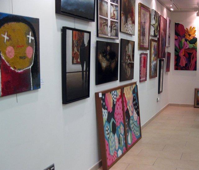 Exposición De Ficemu