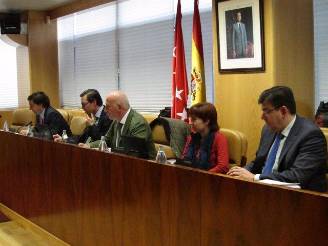 Comisión De Transportes En La Asamblea De Madrid