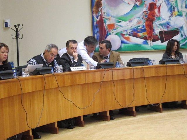 Comisión presupuestos